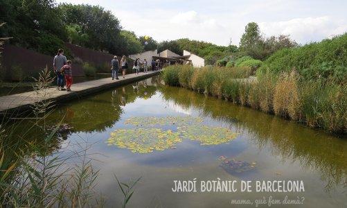 El Jardí Botànic de Barcelona: un oasis en medio de la urbe