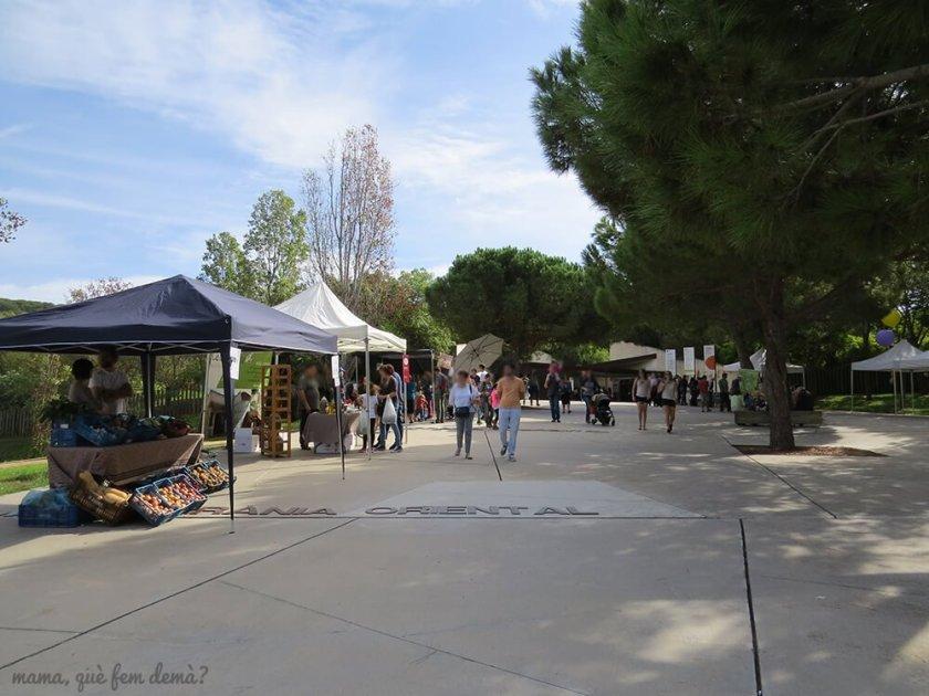 jardi_botanic17