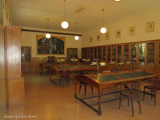 Biblioteca de la Colonia Vidal