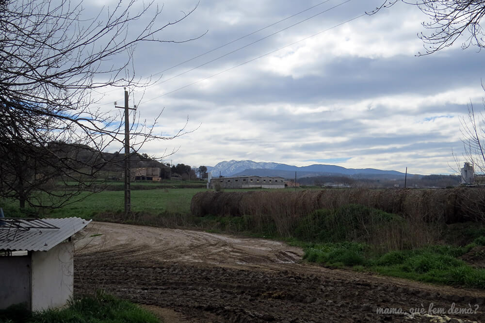 Vistas del Montseny nevado desde la Granja de Cal Rei