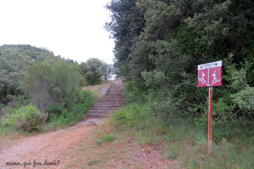Camino hacia la Iglesia románica de Sant Quirze de Pedret