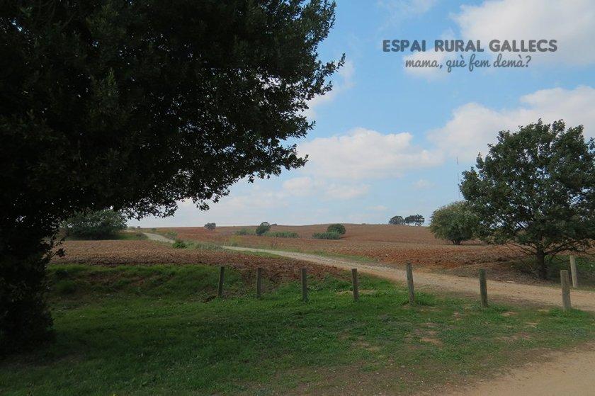 espai rural gallecs