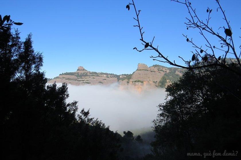 Vistas del Paller de Tot l'Any desde la Font de la Portella