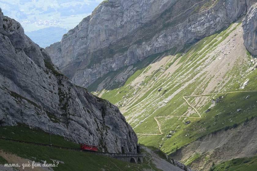 Tren cremallera del Pilatus subiendo por un desfiladero de rocas