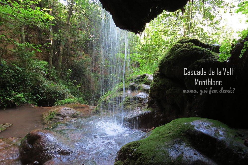 cascada vall montblanc