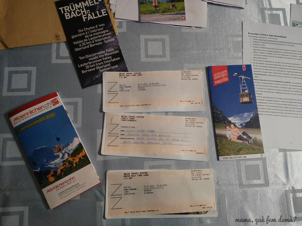 Swiss Travel Pass Flex, tarjetas de transporte de Suiza
