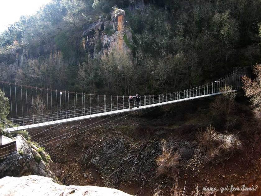 Pont penjant de la Maçana