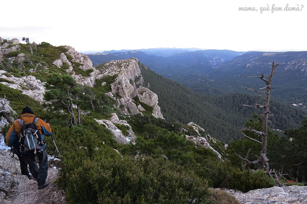 excursión Mont Caro