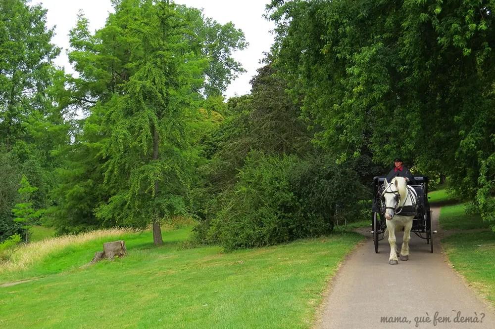 Carruaje de caballlos paseando por el jardín botánico de Aarhus
