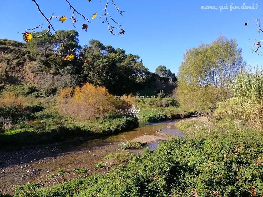 Río Ripoll en Sabasdell
