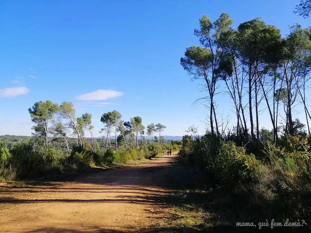 Dos personas paseando por el Bosc de Can Deu de Sabadell