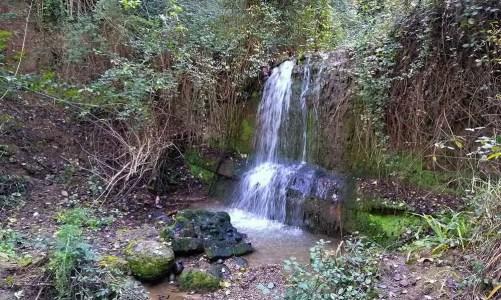 Excursión en Sabadell por el río Ripoll, Torrent de Ribatallada y bosc de Can Deu