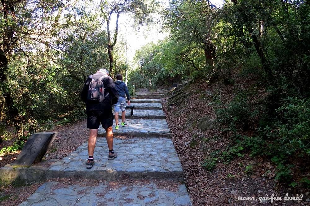 Escaleras que llevan al Centre d'Informació del Parc de Collserola