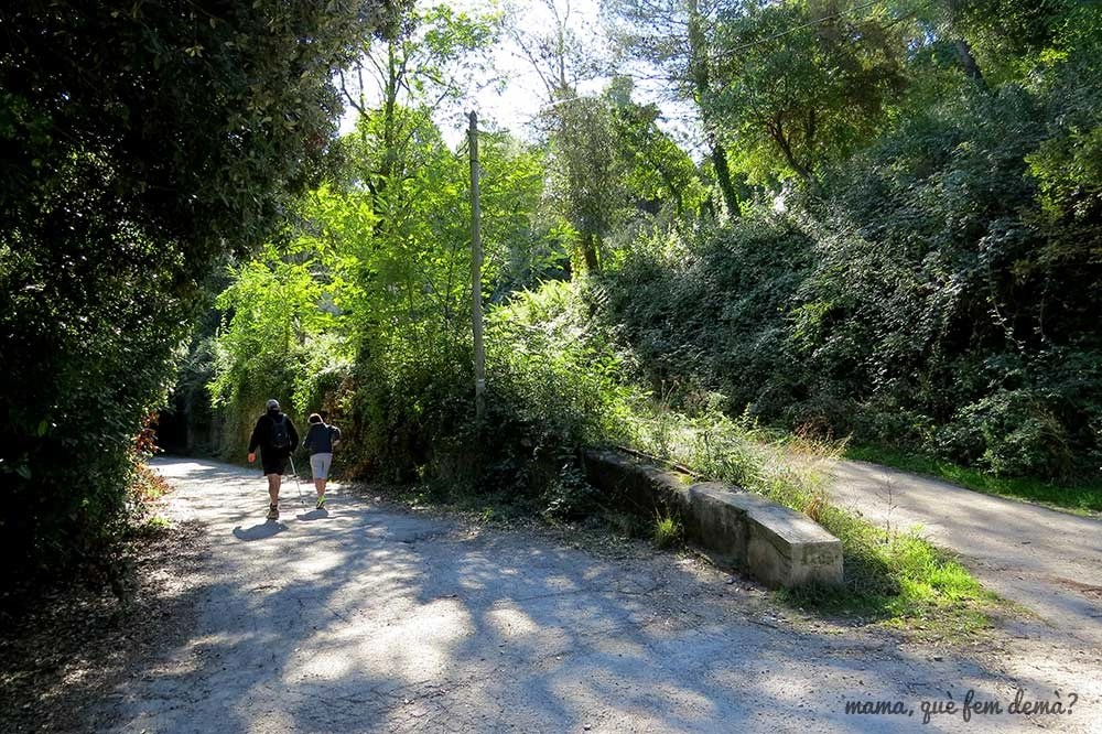 Cruce de caminos en la serra d'en Cardona