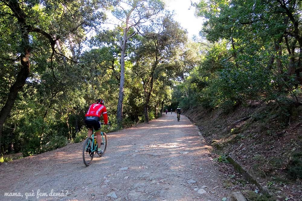 Camí del Salze en Collserola con ciclistas