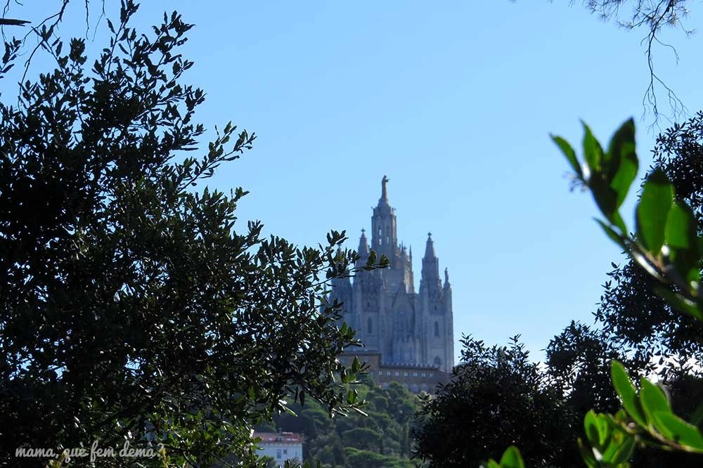 Basílica del Tibidabo desde la serra d'en Cardona
