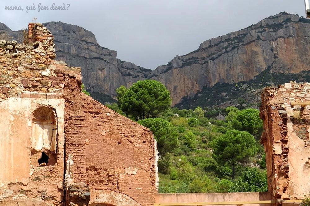 ruinas de la Cartoixa d'Escaladei y detrás las montañas de la Serra del Montsant