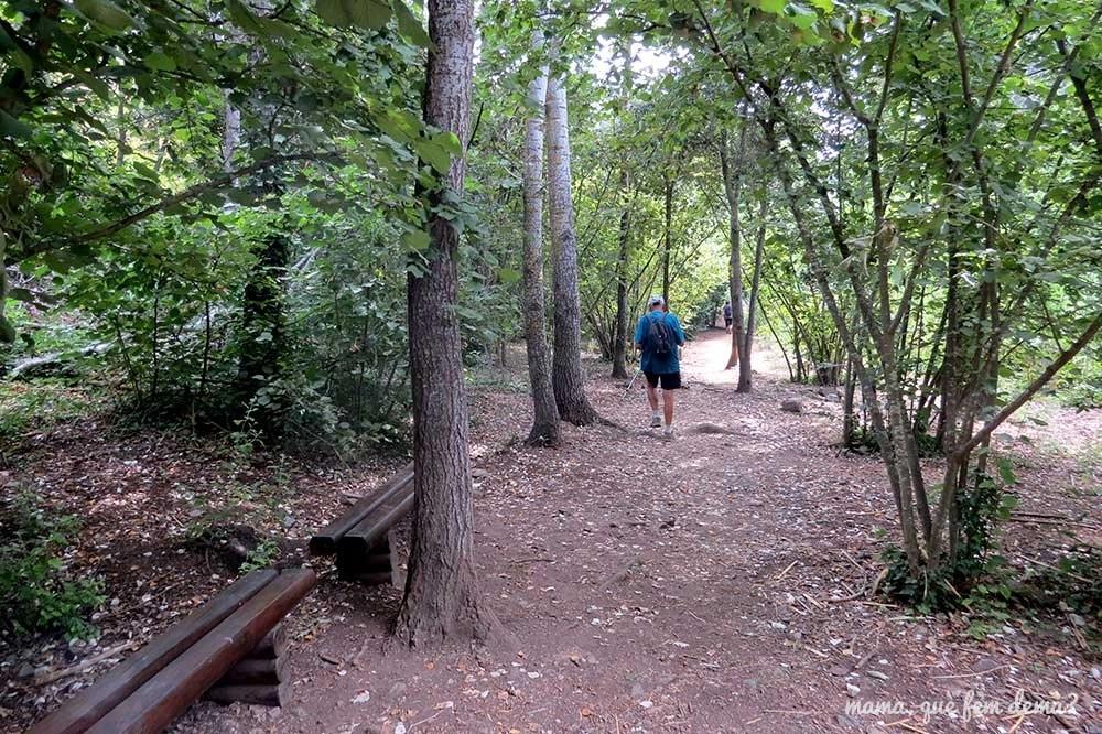 Zona con bancos de madera en el Camí del Rec de la Selva del Camp