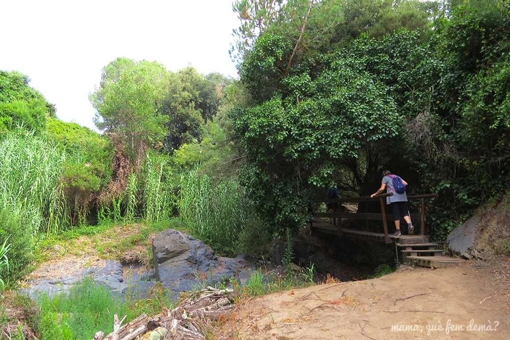 Mujer caminando por una pasarela de madera en Camí del Rec de la Selva del Camp