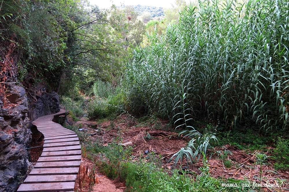 Pasarela de madera en el Camí del Rec de la Selva del Camp
