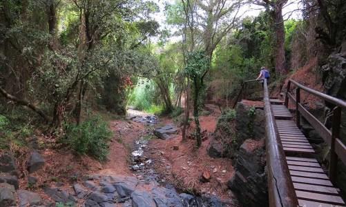 Camí del Rec de la Selva del Camp: excursión en Tarragona