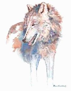 Grey wolf by Alison Nicholls