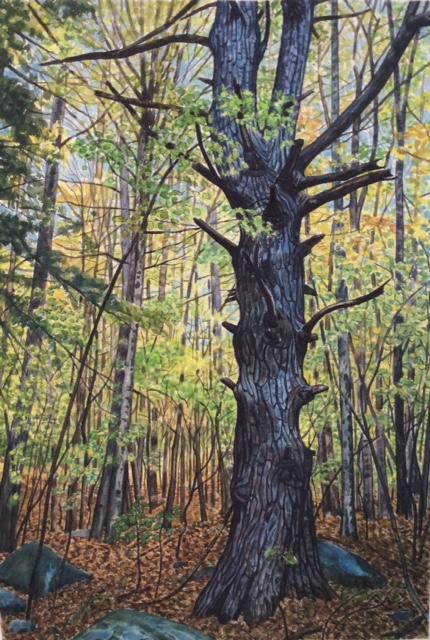 "James Maciel, Blue tree, Watercolor, 24""x30"", $250"