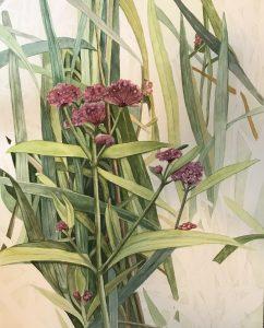"Lorie Gurian, Wildflowers, Watercolor, 14""x20"", $300"