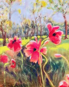 "Arlene Oraby, Popping Poppies, Oil, 20""x24"", $350"