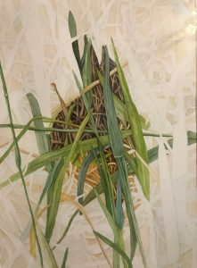 "Lorie Gurian, Grasses, Watercolor, 25""x19"", $300"