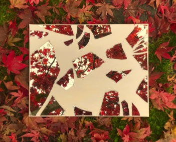 "Christine Knowlton, Desert Passage on Red Maple, Photograph-Mirror Art on Location, 12""x9"", $175"