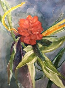 "Sharon Linsker, Red Ginger, Watercolor & watercolor pencil, 8.5""x11.5"", $275"