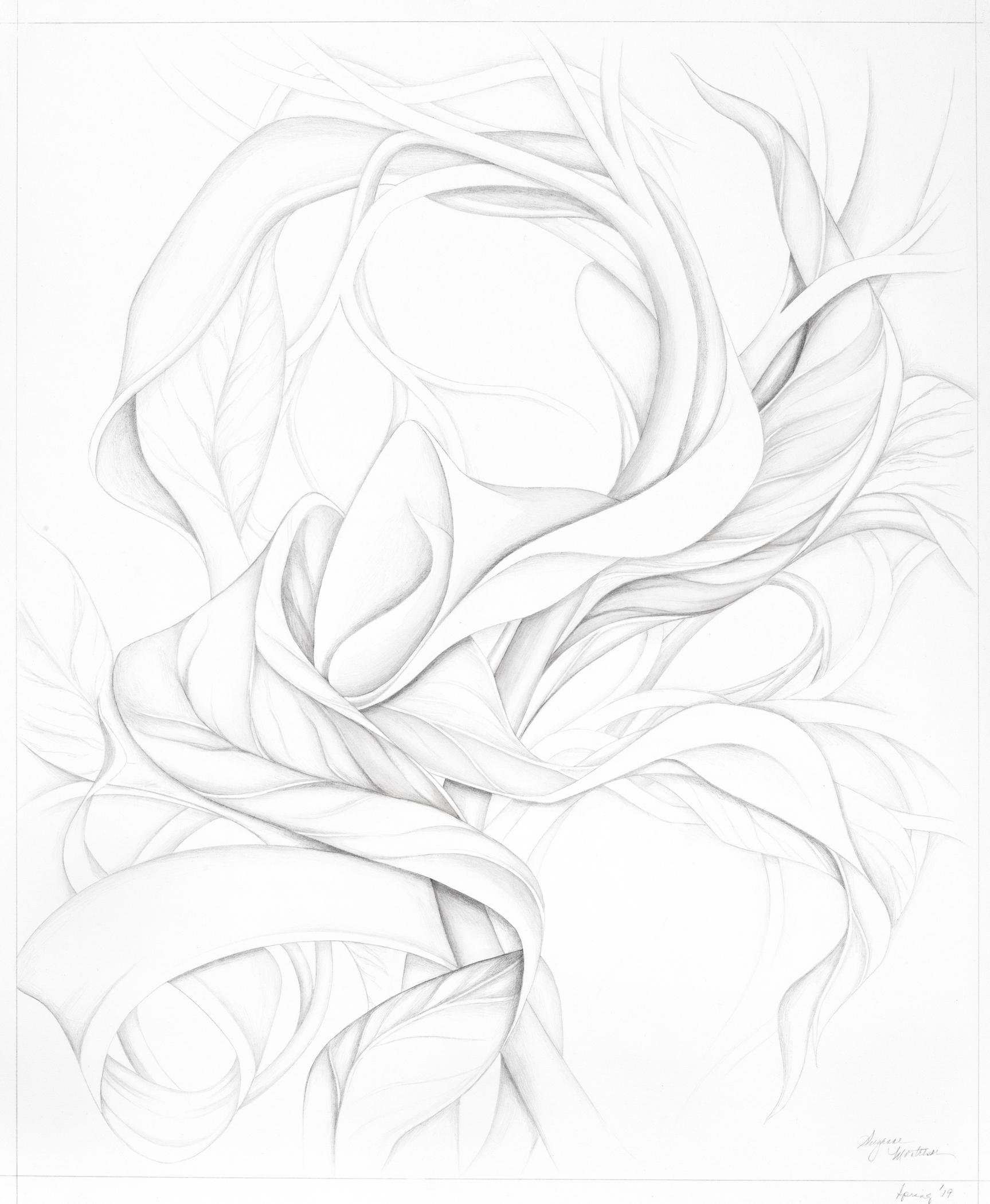 """Suzanne Montresor, Impressions, Graphite on paper, 31""""x27"""", $900"""