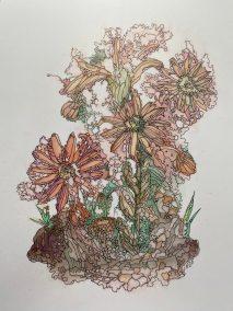 """Inge Trampler, Houseleek, Acrylic,11""""x8.5"""","""