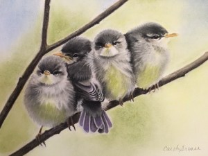 """Carol Gromer, The Birds, Conte and Charcoal, 20.5""""x23"""", $1,500"""