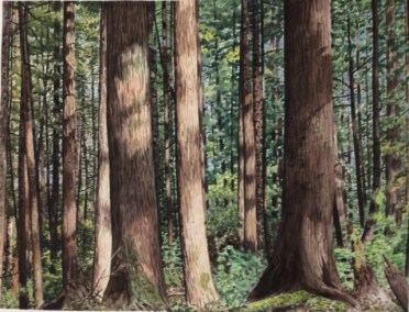 "Jim Maciel, Forest, Watercolor, 24""x30"", $250"