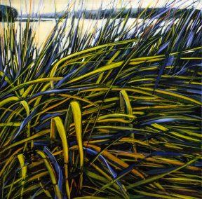 """Jane Black, Tangled Grasses, Oil on linen, 24""""x24"""", $800"""