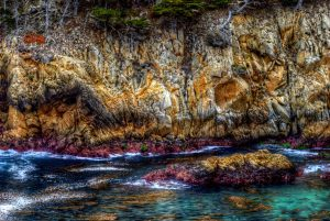 "David Greene, Point Lobo Cove, Photograph on aluminum, 24""x36"", $725"