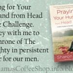 PFYH Day 13 Praying Challenge {MCS Devotional}