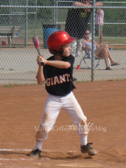 Bubba-2008-baseball
