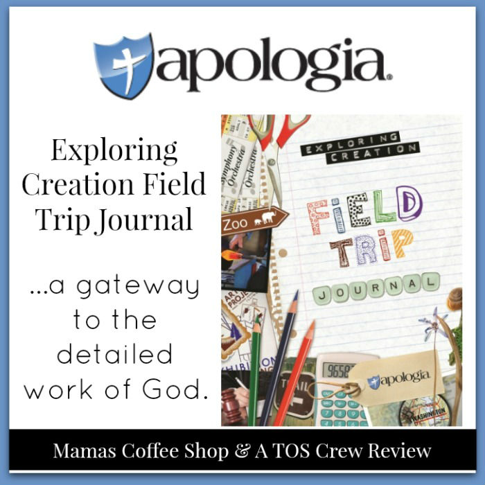 MamasCoffeeShop-CreationJouranl-Apologia-Collage