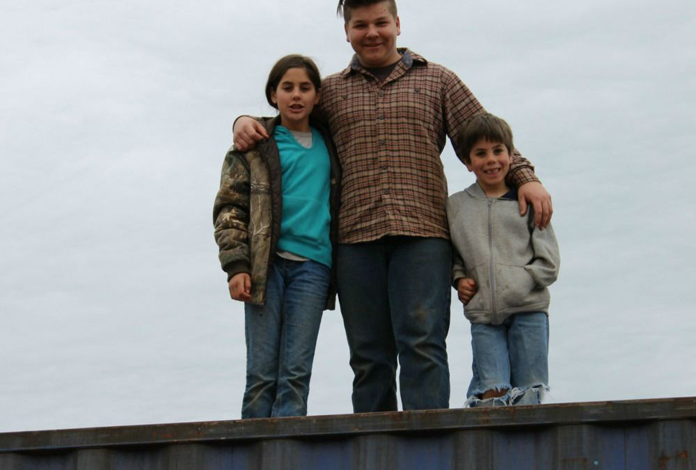 Homeschooling and Homesteading During The High School Years
