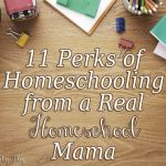 11 Perks of Homeschool from a Real Homeschool Mama