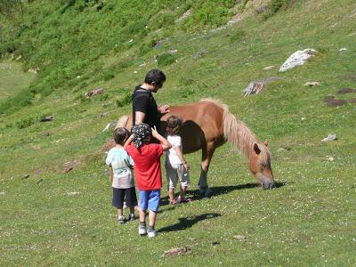 Asturias: Cangas de Onís y el mirador de El Pitu 7