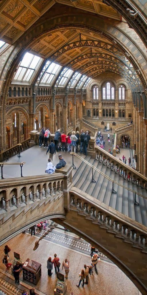 Museo Ciencias Naturales Londres