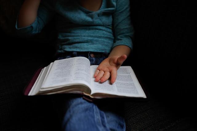 ¿Y si compartimos los libros? Literatura juvenil con la que disfrutamos los adultos 1