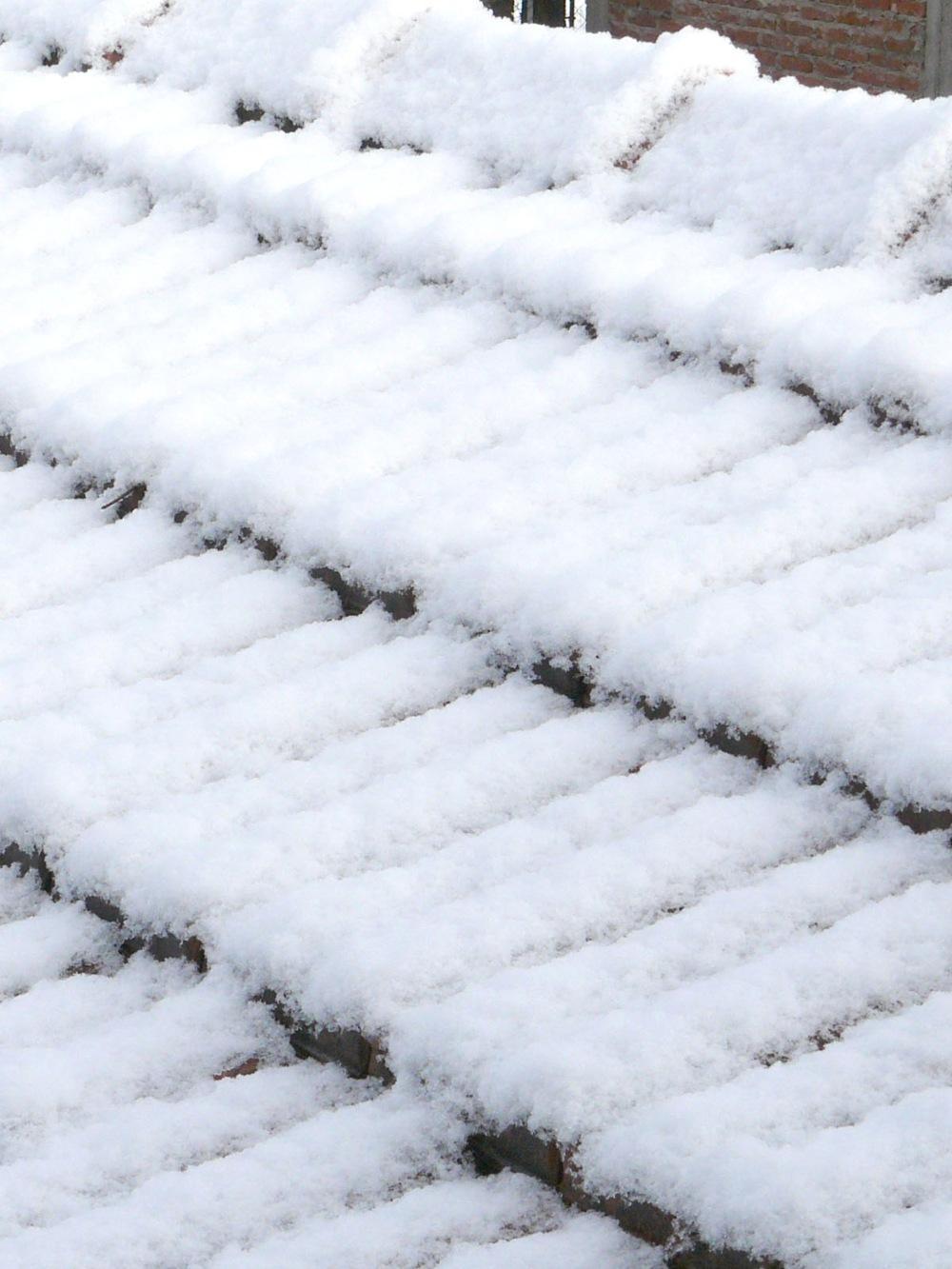 todo cubierto de nieve