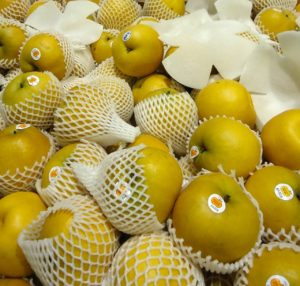 Asian Pear (Light Yellow on color)