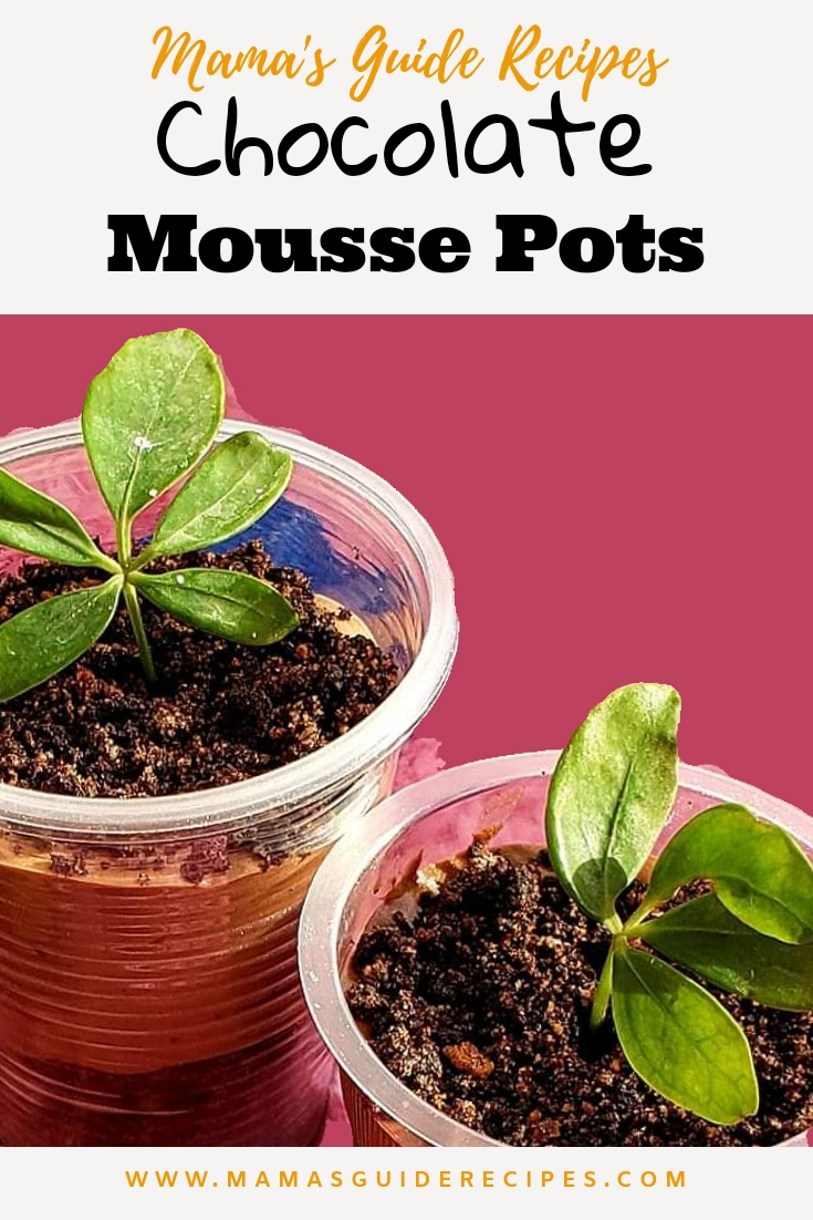CHOCOLATE MOUSSE POTS
