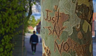 Just Say No carved on Tree Trunk